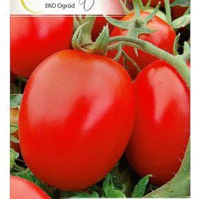 pomidor galera przod