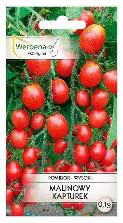 pomidor malinowy kapturek przod