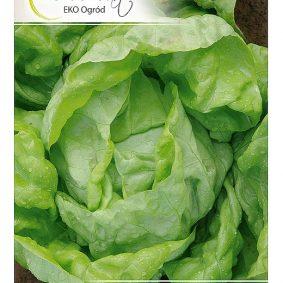 salata amur przod
