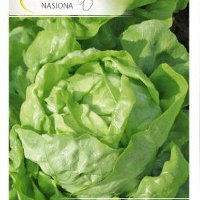 salata alamer front