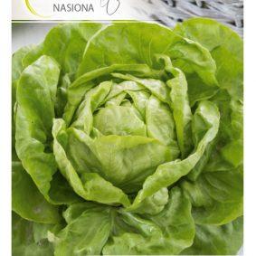 salata apollo front