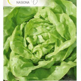 salata julek front
